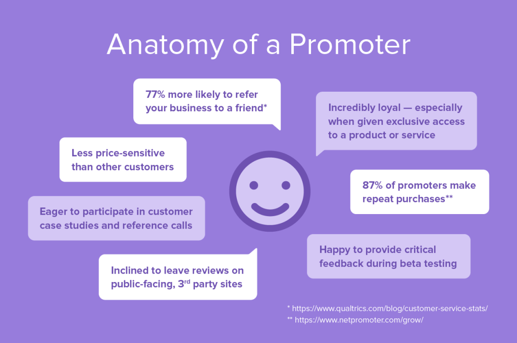 Anatomy of an NPS promoter