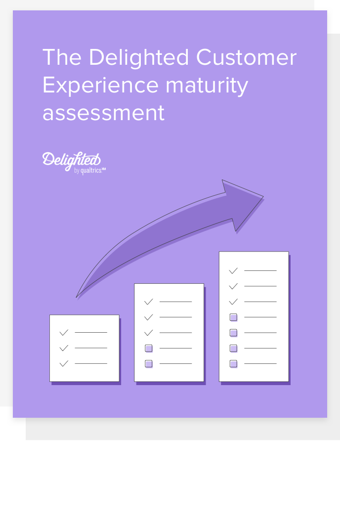 delighted cx maturity assessment